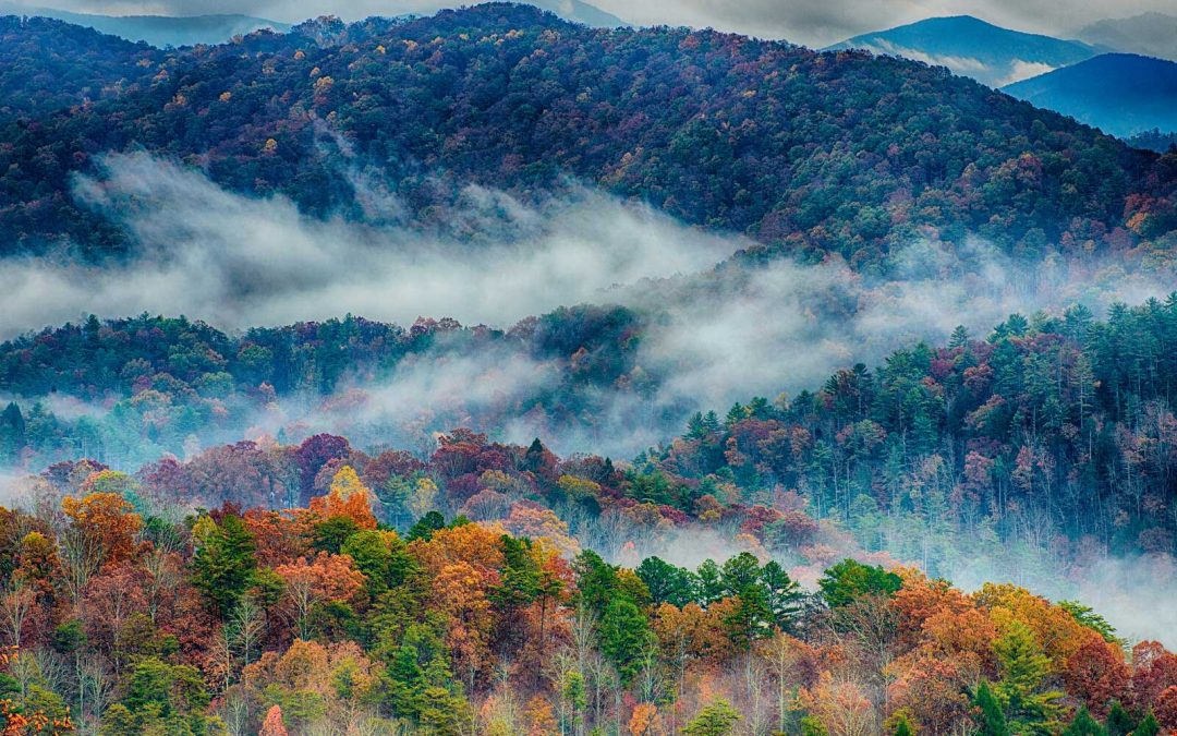 Fun Things To Do On a Rainy Day in the 828 Great Smoky Mountains